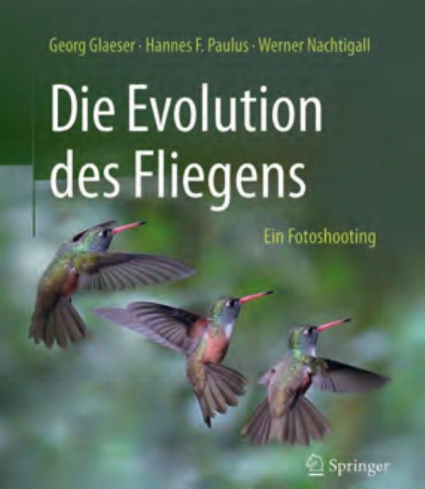 Die Evolution des Fliegens